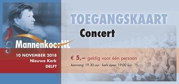 1. Toegang concert